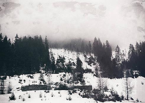 Justyna Jaszke JBJart - winter photo