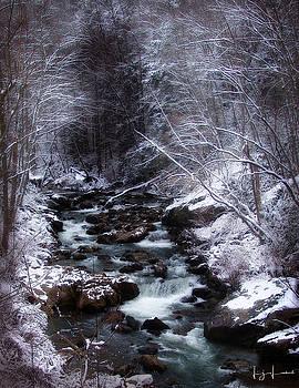 Winter Photography by Lj Lambert