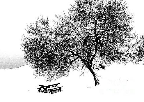 Roland Stanke - winter picnic bench
