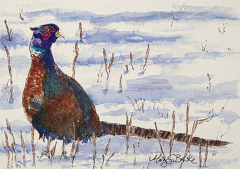 Mary Benke - Winter Plumage