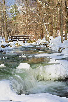 Winter Portrait by Bill Wakeley