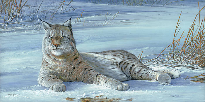 Winter Prince by Mike Brown