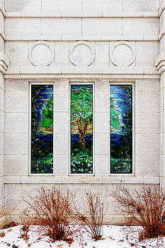 Winter Quarters Temple Tree of Life Stained Glass Window Details by Greg Collins