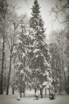 Winter quiet. Chernihiv, 2013. by Andriy Maykovskyi