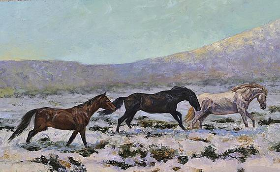 Winter Range by Karen McLain