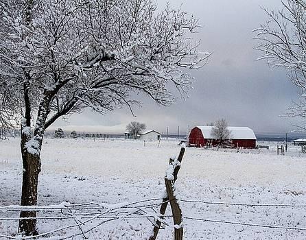 Winter Red Barn by Nadine Berg