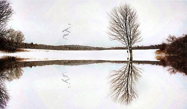 Winter Reflection by Sue Collura