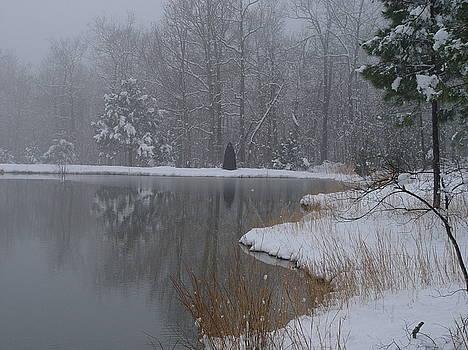 Alana  Schmitt - Winter Reflections 3