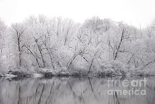 Winter Reflections by Birgit Tyrrell