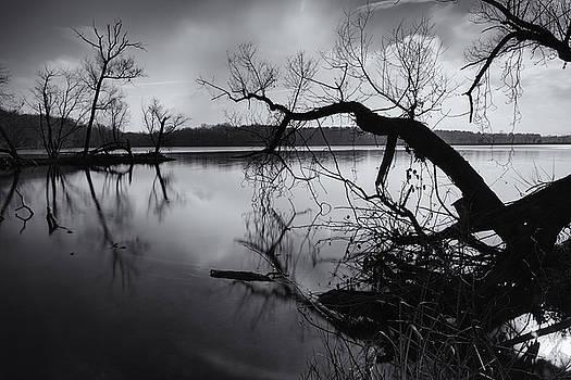 Winter Reflections by David Oakill