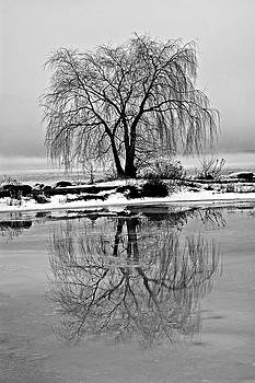 Winter reflections by Peter Pauer