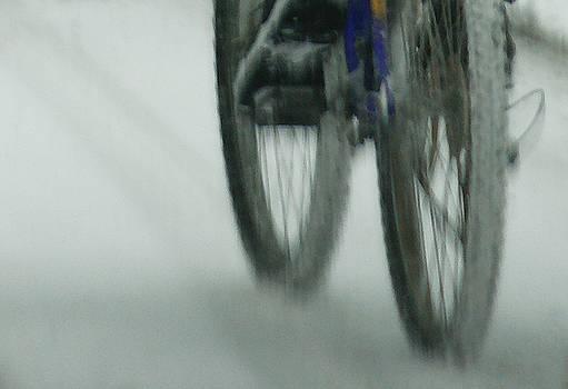 Linda Shafer - Winter Ride