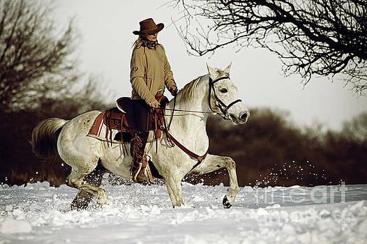 Dimitar Hristov - Winter Ride On The White Horse