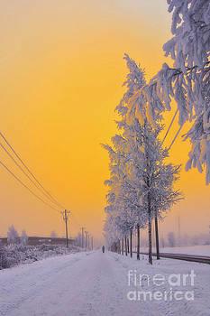Winter road 2 by Veikko Suikkanen