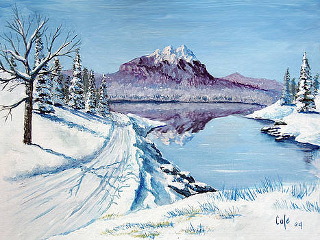 Winter Road by Larry Cole