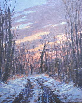 Winter Road by Stephen Howell