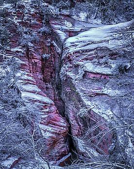 Winter Rocks In Zion by Dewey Farmer