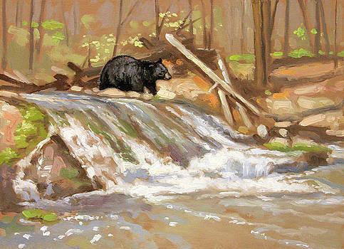 Winter Run-off Black Bear by Larry Seiler