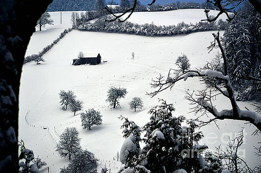 Winter Scene in Switzerland by Susanne Van Hulst