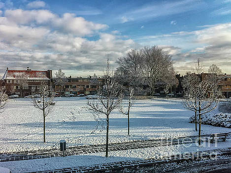 Winter scene by Patricia Hofmeester