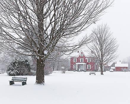 Winter Scene by Tim Kirchoff