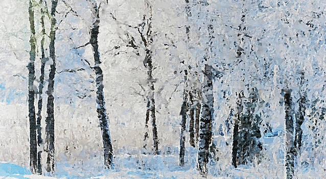 Winter Scenery II by Pekka Liukkonen