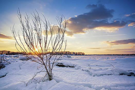 Lorrie Joaus - Winter Scenery