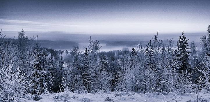 Ismo Raisanen - Winter Scenery Of The Lake Hiidenvesi BW