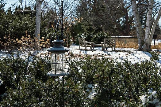 Winter Serenity by Jayne Gohr