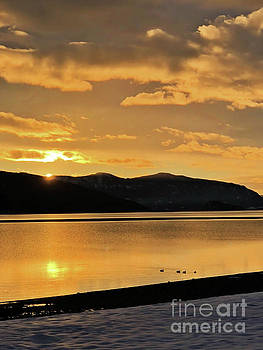 Winter Setting by Victor K