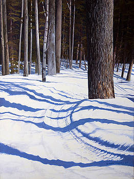 Winter Shadows by Dinny Madill