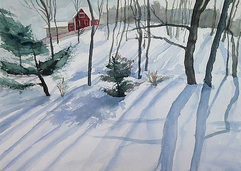 Winter Shadows by Katie Cornog