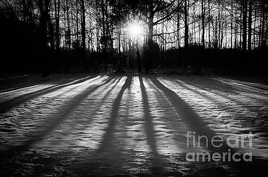 Winter Shadows landscape photo by Melissa Fague