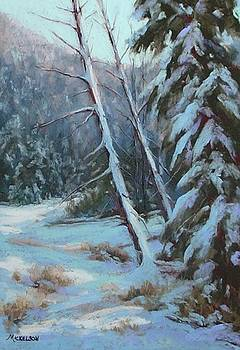 Winter Silence by Debra Mickelson