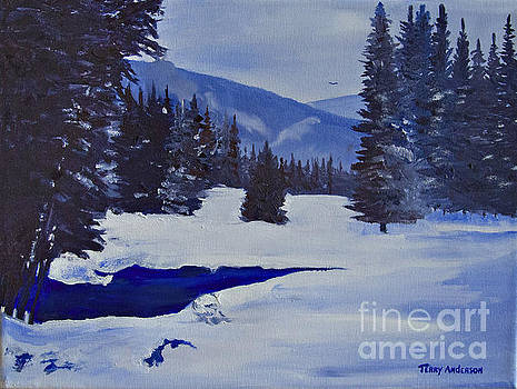 Winter Silence by Terry Anderson