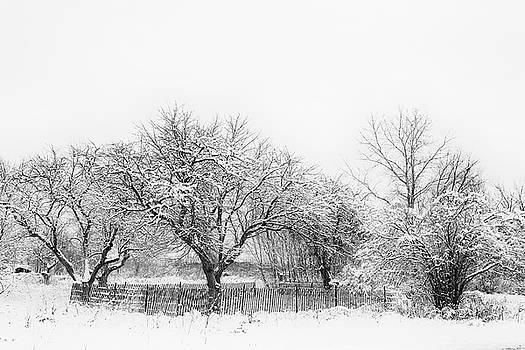 Winter Sketch by CJ Schmit