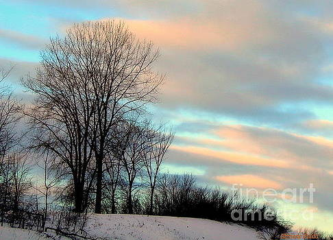 Winter Sky by Elfriede Fulda