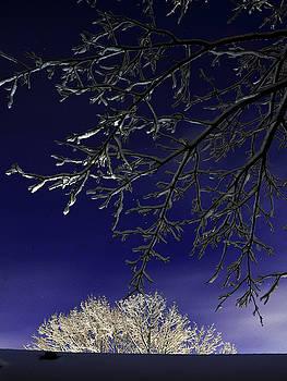 Winter Sky by Eugene Forte