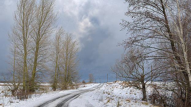 Winter sky. Horytsya, 2017. by Andriy Maykovskyi