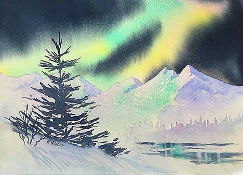Winter Skylights by Teresa Ascone