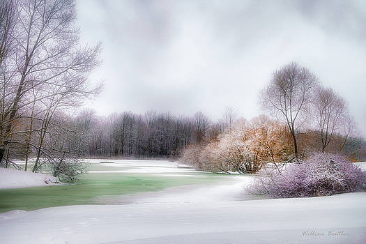 Winter Solace by William Beuther