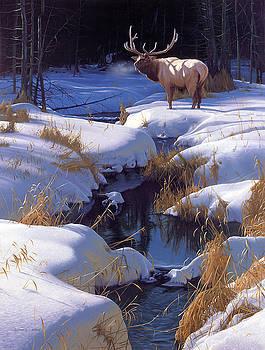 Winter Sonata by Derek Wicks