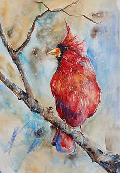 Winter Songbird by Adam VanHouten