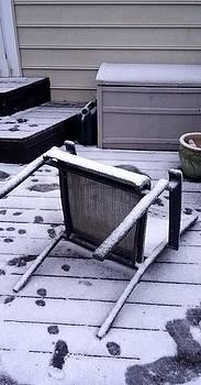 Winter Storm Damage #2 by Richard Ortolano