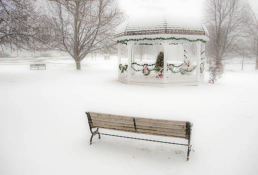 Winter Storm on the Common by Gordon Ripley