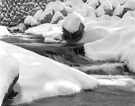 Winter Stream by Brian Puyear