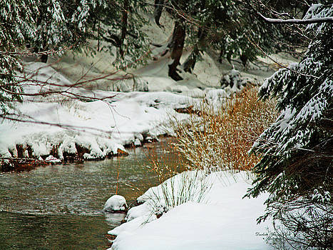 Darlene Bell - Winter Stream