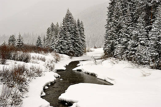 Winter Stream by Frank Remar