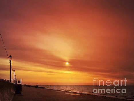 Winter Sun by John Edwards
