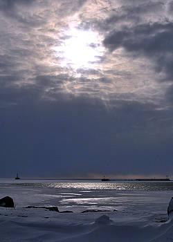 Winter Sun by Kelly E Schultz